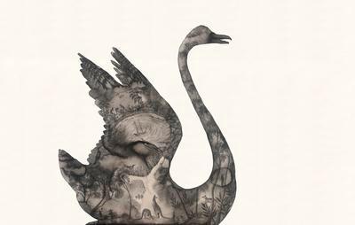 Black Swan / After Port Jackson Painters; 2016; 021-001