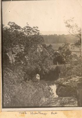 Creek Shoalhaven